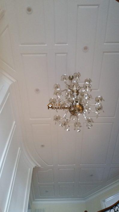 Ceiling rased panel design