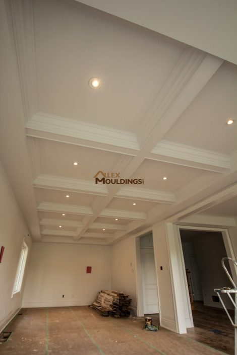 Ceiling boxes with crown mouldings and lights