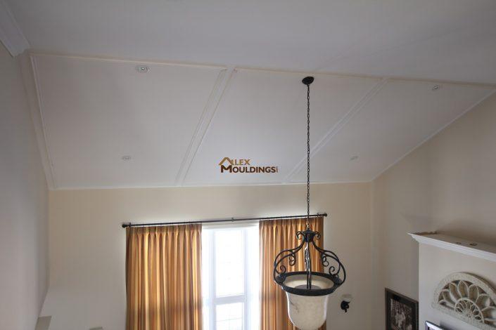 ceiling appliques