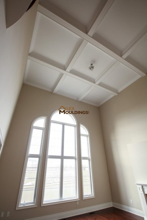 cathedral ceiling completed with waffle ceiling design